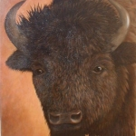 bison-portrait